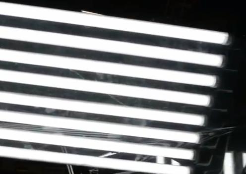 Fluorescent Light Tubes, Look Again It Is The Medusa LED: