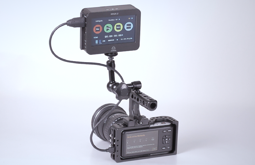 Blackmagic Pocket Cinema Camera BMPCC Cage Rig With 15mm Rail Holder Review: